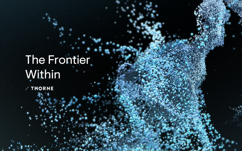 404 error page deisgn example #119: The Frontier Within